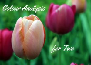 Gift Voucher Colour Analysis For Two